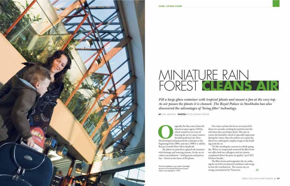 Miniature rain forest cleans air